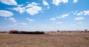 在蓝天和白色云彩内蒙古浑善达克桑迪土地下 免版税库存图片