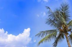 在蓝天和白色云彩的明亮的晴天 库存图片