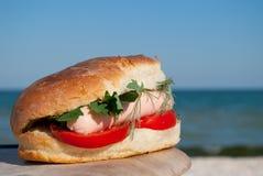 在蓝天和蓝色海背景的开胃汉堡三明治  免版税库存图片