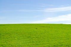 在蓝天天际的绿色meadown 库存照片