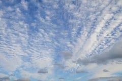 在蓝天扇动的蓬松白色云彩 库存照片