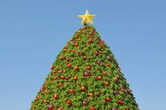 在蓝天的圣诞树 免版税库存图片