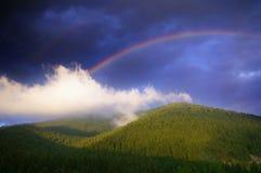 在蓝天的彩虹在绿色森林和山 免版税图库摄影