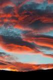 在蓝天的意想不到的红色云彩在日落期间 免版税库存图片