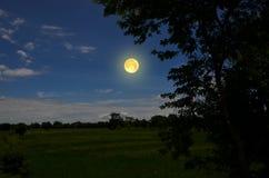 在蓝天的明亮的满月在领域 库存照片