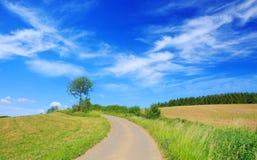 在蓝天的柏油路通过绿色领域和云彩 免版税库存照片