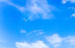 在蓝天的自由飞行晴天风筝形状是鸟c 免版税库存图片