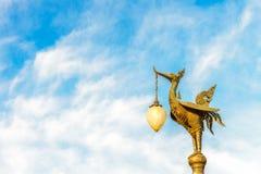 在蓝天的金黄天鹅 库存照片