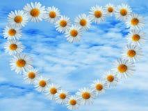 在蓝天的雏菊心脏 库存照片