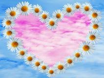 在蓝天的雏菊心脏 免版税库存照片