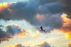 在蓝天的飞鸟 免版税库存照片