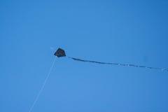 在蓝天的黑暗的风筝飞行 库存照片