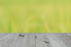 在蓝天的Backgruond木头 图库摄影