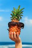 在蓝天背景的菠萝 库存图片