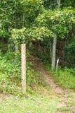 在蓝岭山行车通道的两个阿巴拉契亚足迹标志 库存照片