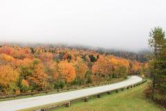 在蓝岭山行车通道的叶子 免版税图库摄影