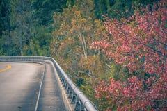 在蓝岭山行车通道的秋天颜色在阿什维尔附近,北部加州 免版税库存照片