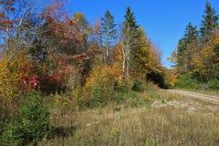 在蓝色一边的清洁碾碎山路,在农村海角不列塔尼人小山的一条泥铺跑道秋天的 免版税库存照片