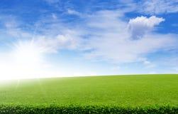 在蓝色下的绿色领域覆盖天空 库存照片