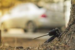 在蓝色云杉下落的针的失去的汽车钥匙  后面迷离背景bokeh 图库摄影