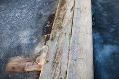 在蓝色冰的木板走道 免版税库存照片