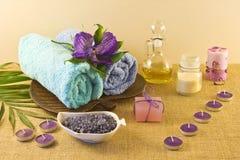 在蓝色和紫罗兰色颜色的温泉构成 免版税库存照片