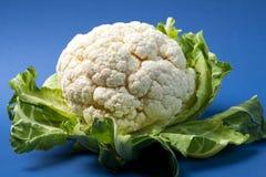 在蓝色地面的新鲜的花椰菜 免版税图库摄影