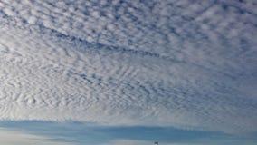在蓝色夏天天空的白色天空形成 库存图片