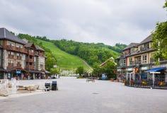 在蓝色山村, Collingwood,加拿大的夏天 免版税图库摄影