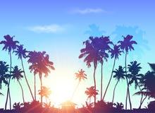 在蓝色日出天空的棕榈剪影 免版税库存图片