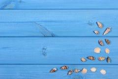 在蓝色木板、假期和夏时,文本的拷贝空间的贝壳 库存图片