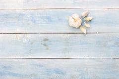 在蓝色木板,顶视图的大蒜 图库摄影