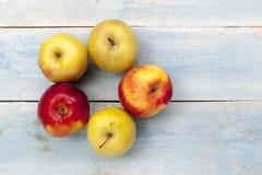 在蓝色木桌上的新鲜的苹果 库存图片