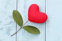 在蓝色木桌安置的红色心脏连接用分支o 库存照片