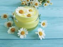 在蓝色木背景的奶油色化妆雏菊春黄菊产品保护生气勃勃萃取物 免版税库存图片