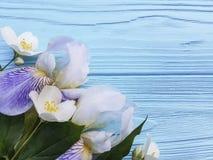 在蓝色木背景的新鲜的虹膜开花秀丽高雅花 库存图片