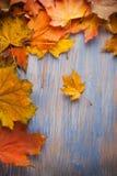在蓝色木背景顶视图的秋天叶子 免版税库存图片
