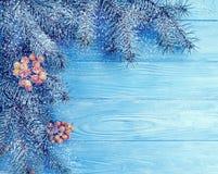 在蓝色木背景,雪的圣诞树冬天分支假日冷漠的招呼的装饰季节 库存图片