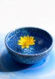 在蓝色杯子的黄色花 库存照片