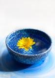 在蓝色杯子的黄色花 免版税库存图片