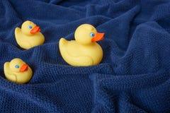 在蓝色波浪毛巾的三只黄色橡胶鸭子 库存照片