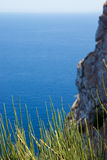 在蓝色海、天空和岩石背景的草  免版税库存照片
