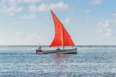 在蓝色海湾-毛里求斯的猩红色风帆 库存图片