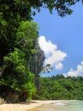 在蓝色海的绿色热带密林。 库存照片