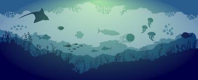 在蓝色海背景的水下的礁石野生生物 皇族释放例证