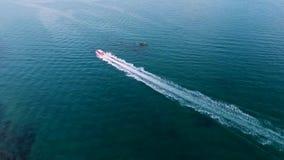 在蓝色海水的Speadboat航行 HD天线跟随射击 普吉岛泰国 股票录像