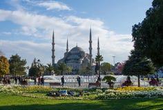 在蓝色清真寺前面的公园在春天 库存照片