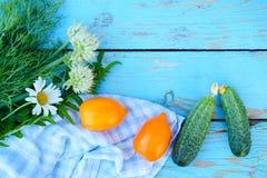 在蓝色的平的位置绘了老木桌用新鲜的莳萝和 库存图片