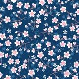 在蓝色的日本樱花样式 免版税库存图片