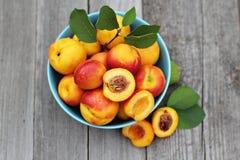 在蓝色碗的新鲜的桃子 免版税库存照片